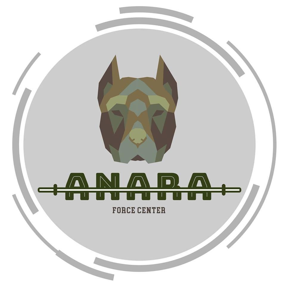 logo de Anara Force Center